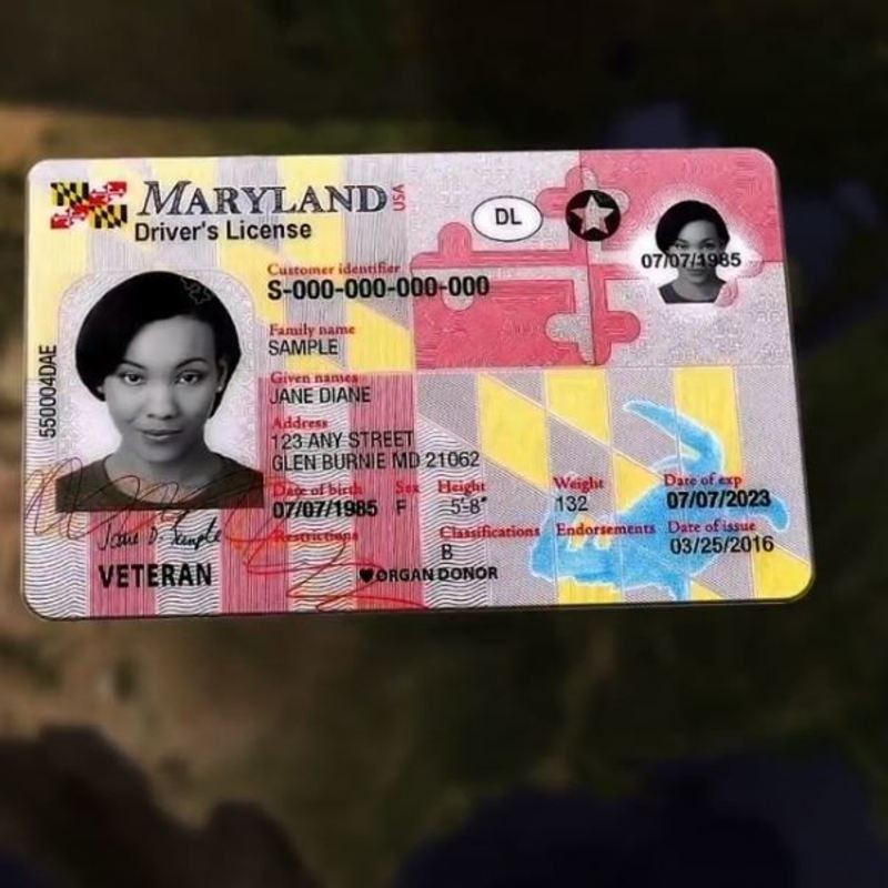 New Maryland driver's license requirements creating frustration amongst  residents | WJLA