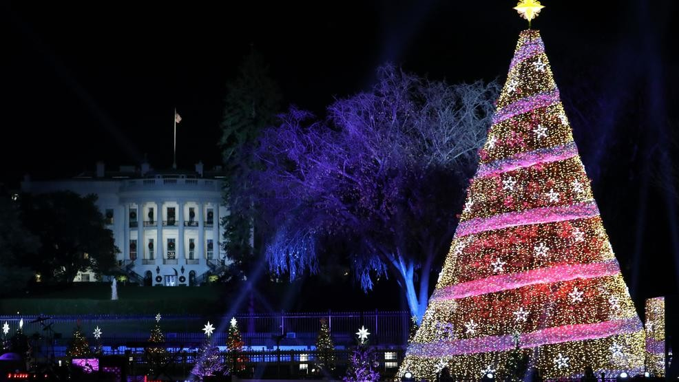 Lottery For Tickets To National Christmas Tree Lighting Opens Today