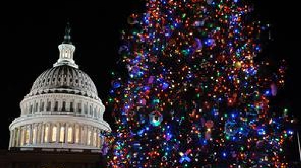 Capitol Christmas Tree.U S Capitol Christmas Tree Arrives In D C Wjla