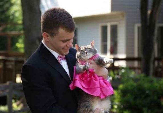 Sam Steingard Of Germantown Md Took His Cat Ruby To The Prom