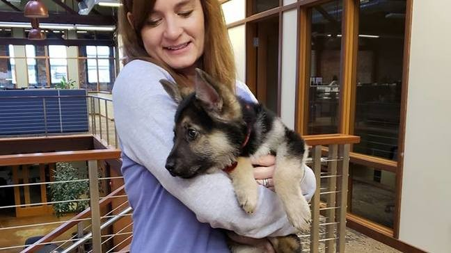 A Puppy Forever Washington Rescue Creates Bucket List For Dying