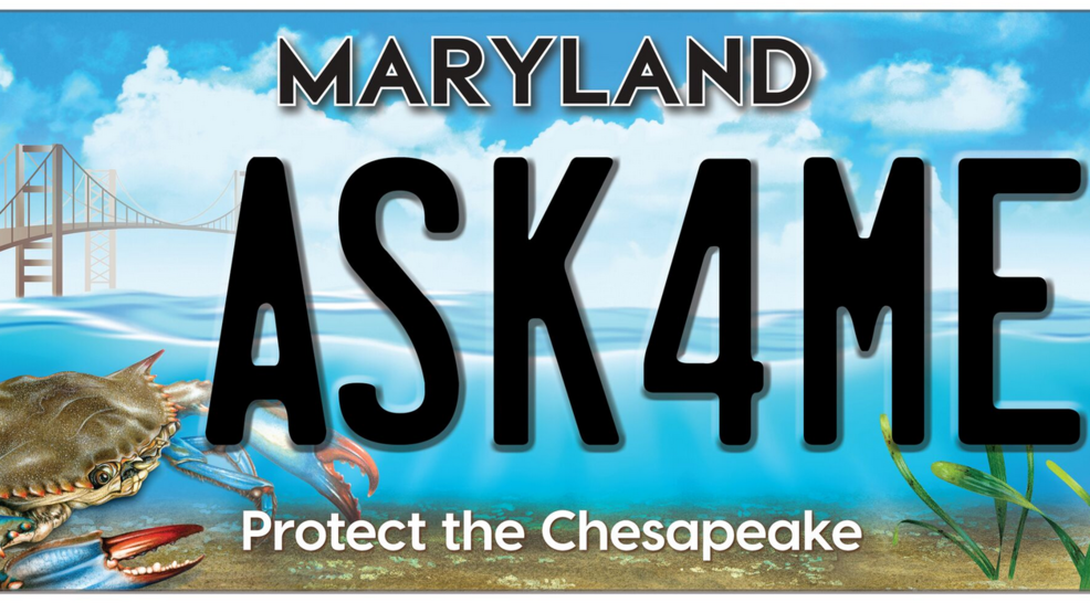 License For Maryland Revealed Wjla Plate Bay New Chesapeake Surprise